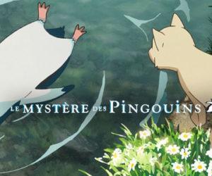 Le mystère des pingouins – la route pinguinesque