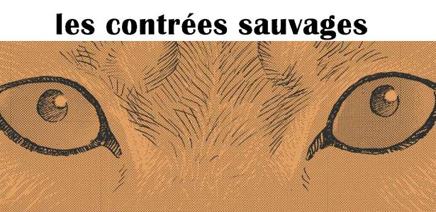 Les contrées sauvages, la nature sinon rien par Jiro Taniguchi